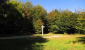 Randonnée Marche PIERREFONDS - en forêt de Compiègne_20_le Beaudon_bois de Damart_la Héronnière_bois du Bourgot - Photo 129