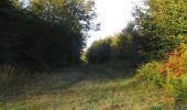 Randonnée Marche PIERREFONDS - en forêt de Compiègne_20_le Beaudon_bois de Damart_la Héronnière_bois du Bourgot - Photo 18