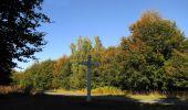 Randonnée Marche PIERREFONDS - en forêt de Compiègne_20_le Beaudon_bois de Damart_la Héronnière_bois du Bourgot - Photo 63