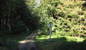 Randonnée Marche PIERREFONDS - en forêt de Compiègne_20_le Beaudon_bois de Damart_la Héronnière_bois du Bourgot - Photo 103
