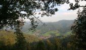 Randonnée V.T.T. SAINTE-MARIE-AUX-MINES - Espace VTT FFC Val d'Argent - Circuit n°2 - La Pierre de Lusse - Photo 2