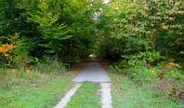 Randonnée Marche SAINT-JEAN-AUX-BOIS - en forêt de Compiègne_21_la Muette_les Clavières_la Brévière - Photo 150