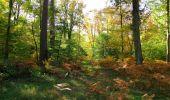 Trail Walk SAINT-JEAN-AUX-BOIS - en forêt de Compiègne_21_la Muette_les Clavières_la Brévière - Photo 139