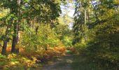 Randonnée Marche SAINT-JEAN-AUX-BOIS - en forêt de Compiègne_21_la Muette_les Clavières_la Brévière - Photo 4