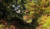 Randonnée Marche SAINT-JEAN-AUX-BOIS - en forêt de Compiègne_21_la Muette_les Clavières_la Brévière - Photo 94