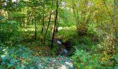 Randonnée Marche SAINT-JEAN-AUX-BOIS - en forêt de Compiègne_21_la Muette_les Clavières_la Brévière - Photo 29