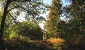 Randonnée Marche SAINT-JEAN-AUX-BOIS - en forêt de Compiègne_21_la Muette_les Clavières_la Brévière - Photo 95