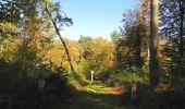 Trail Walk SAINT-JEAN-AUX-BOIS - en forêt de Compiègne_21_la Muette_les Clavières_la Brévière - Photo 125
