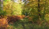 Trail Walk SAINT-JEAN-AUX-BOIS - en forêt de Compiègne_21_la Muette_les Clavières_la Brévière - Photo 133