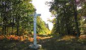 Randonnée Marche SAINT-JEAN-AUX-BOIS - en forêt de Compiègne_21_la Muette_les Clavières_la Brévière - Photo 87