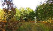 Randonnée Marche SAINT-JEAN-AUX-BOIS - en forêt de Compiègne_21_la Muette_les Clavières_la Brévière - Photo 86