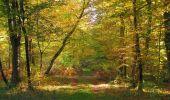 Randonnée Marche SAINT-JEAN-AUX-BOIS - en forêt de Compiègne_21_la Muette_les Clavières_la Brévière - Photo 78