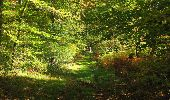 Randonnée Marche SAINT-JEAN-AUX-BOIS - en forêt de Compiègne_21_la Muette_les Clavières_la Brévière - Photo 71