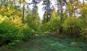 Trail Walk SAINT-JEAN-AUX-BOIS - en forêt de Compiègne_21_la Muette_les Clavières_la Brévière - Photo 45