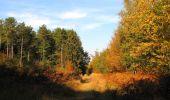 Randonnée Marche SAINT-JEAN-AUX-BOIS - en forêt de Compiègne_21_la Muette_les Clavières_la Brévière - Photo 89