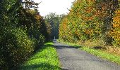 Randonnée Marche SAINT-JEAN-AUX-BOIS - en forêt de Compiègne_21_la Muette_les Clavières_la Brévière - Photo 111