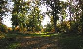 Randonnée Marche SAINT-JEAN-AUX-BOIS - en forêt de Compiègne_21_la Muette_les Clavières_la Brévière - Photo 123