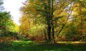 Randonnée Marche SAINT-JEAN-AUX-BOIS - en forêt de Compiègne_21_la Muette_les Clavières_la Brévière - Photo 79