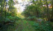 Randonnée Marche SAINT-JEAN-AUX-BOIS - en forêt de Compiègne_21_la Muette_les Clavières_la Brévière - Photo 25
