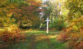 Randonnée Marche SAINT-JEAN-AUX-BOIS - en forêt de Compiègne_21_la Muette_les Clavières_la Brévière - Photo 30