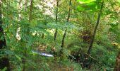 Randonnée Marche SAINT-JEAN-AUX-BOIS - en forêt de Compiègne_21_la Muette_les Clavières_la Brévière - Photo 28