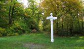 Trail Walk SAINT-JEAN-AUX-BOIS - en forêt de Compiègne_21_la Muette_les Clavières_la Brévière - Photo 51