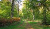 Trail Walk SAINT-JEAN-AUX-BOIS - en forêt de Compiègne_21_la Muette_les Clavières_la Brévière - Photo 39