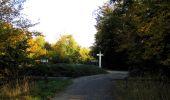 Trail Walk SAINT-JEAN-AUX-BOIS - en forêt de Compiègne_21_la Muette_les Clavières_la Brévière - Photo 35