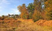 Trail Walk SAINT-JEAN-AUX-BOIS - en forêt de Compiègne_21_la Muette_les Clavières_la Brévière - Photo 102