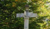 Trail Walk SAINT-JEAN-AUX-BOIS - en forêt de Compiègne_21_la Muette_les Clavières_la Brévière - Photo 137