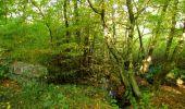 Randonnée Marche SAINT-JEAN-AUX-BOIS - en forêt de Compiègne_21_la Muette_les Clavières_la Brévière - Photo 84
