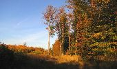 Randonnée Marche SAINT-JEAN-AUX-BOIS - en forêt de Compiègne_21_la Muette_les Clavières_la Brévière - Photo 6