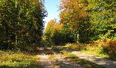 Trail Walk SAINT-JEAN-AUX-BOIS - en forêt de Compiègne_21_la Muette_les Clavières_la Brévière - Photo 135