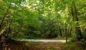 Randonnée Marche SAINT-JEAN-AUX-BOIS - en forêt de Compiègne_21_la Muette_les Clavières_la Brévière - Photo 73