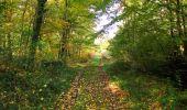 Trail Walk SAINT-JEAN-AUX-BOIS - en forêt de Compiègne_21_la Muette_les Clavières_la Brévière - Photo 79
