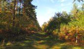 Trail Walk SAINT-JEAN-AUX-BOIS - en forêt de Compiègne_21_la Muette_les Clavières_la Brévière - Photo 116