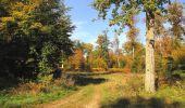 Randonnée Marche SAINT-JEAN-AUX-BOIS - en forêt de Compiègne_21_la Muette_les Clavières_la Brévière - Photo 104