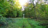 Randonnée Marche SAINT-JEAN-AUX-BOIS - en forêt de Compiègne_21_la Muette_les Clavières_la Brévière - Photo 143