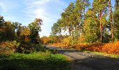 Randonnée Marche SAINT-JEAN-AUX-BOIS - en forêt de Compiègne_21_la Muette_les Clavières_la Brévière - Photo 42