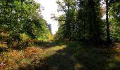 Trail Walk SAINT-JEAN-AUX-BOIS - en forêt de Compiègne_21_la Muette_les Clavières_la Brévière - Photo 84