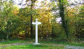 Randonnée Marche SAINT-JEAN-AUX-BOIS - en forêt de Compiègne_21_la Muette_les Clavières_la Brévière - Photo 74