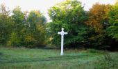 Randonnée Marche SAINT-JEAN-AUX-BOIS - en forêt de Compiègne_21_la Muette_les Clavières_la Brévière - Photo 2