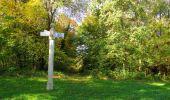 Trail Walk SAINT-JEAN-AUX-BOIS - en forêt de Compiègne_21_la Muette_les Clavières_la Brévière - Photo 74
