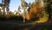 Randonnée Marche SAINT-JEAN-AUX-BOIS - en forêt de Compiègne_21_la Muette_les Clavières_la Brévière - Photo 15