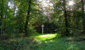 Trail Walk SAINT-JEAN-AUX-BOIS - en forêt de Compiègne_21_la Muette_les Clavières_la Brévière - Photo 42