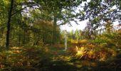 Randonnée Marche SAINT-JEAN-AUX-BOIS - en forêt de Compiègne_21_la Muette_les Clavières_la Brévière - Photo 91