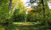 Trail Walk SAINT-JEAN-AUX-BOIS - en forêt de Compiègne_21_la Muette_les Clavières_la Brévière - Photo 50