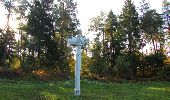 Randonnée Marche SAINT-JEAN-AUX-BOIS - en forêt de Compiègne_21_la Muette_les Clavières_la Brévière - Photo 19