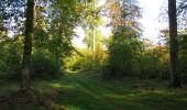 Randonnée Marche SAINT-JEAN-AUX-BOIS - en forêt de Compiègne_21_la Muette_les Clavières_la Brévière - Photo 40