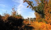Randonnée Marche SAINT-JEAN-AUX-BOIS - en forêt de Compiègne_21_la Muette_les Clavières_la Brévière - Photo 106